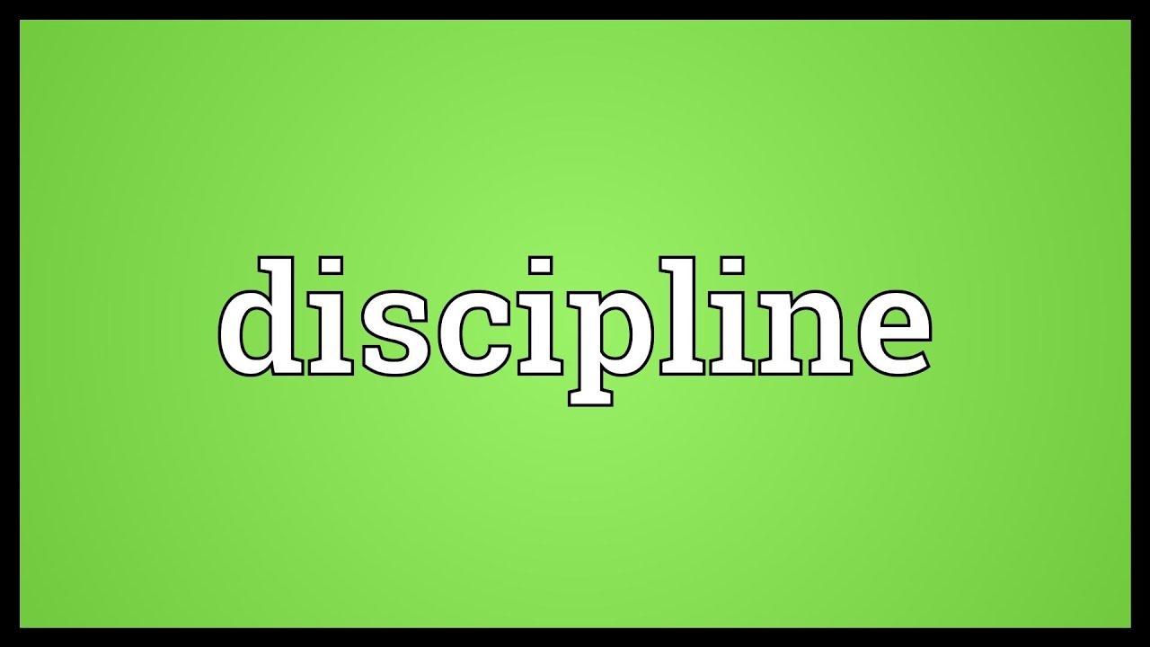 The Discipline Log