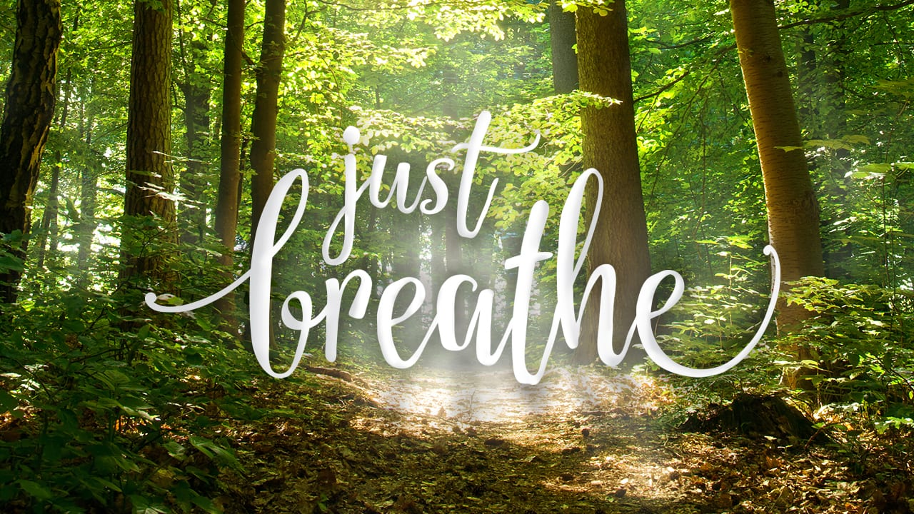 The Mind-Body-Breath Connection