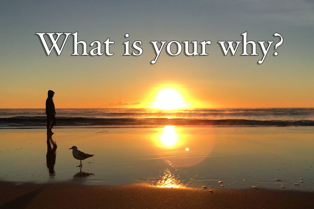 """Establishing Your """"Why"""" So You Can Determine Your """"What"""" and """"How"""""""