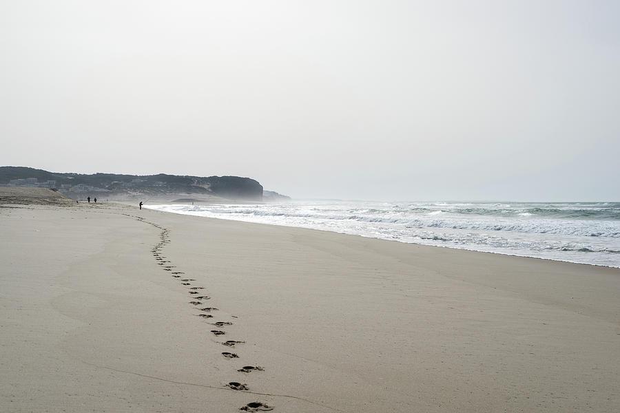 A Smoother Shore